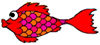poisson_rouge