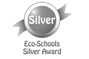 Image result for eco silver award