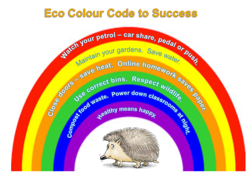 Eco News | Damers First School